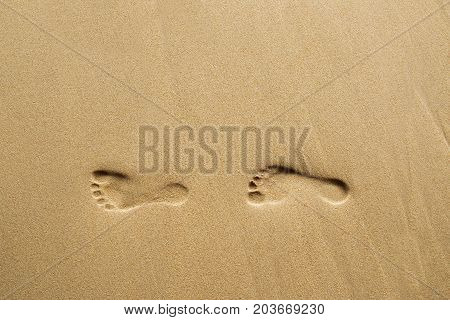 Footprints on beach. Footprints on clean sand.