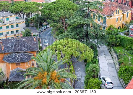 Beautiful sunset view from top to a road in Santa Margherita Ligure city, Italy. Cars riding.