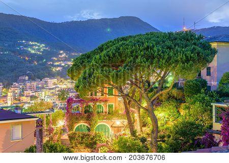 Beautiful night view from balcony to green tree and Santa Margherita Ligure city in Italy