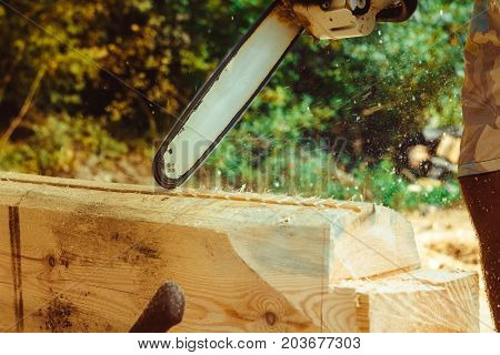 Man with a chainsaw cutting a tree for construction