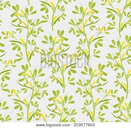 Floral seamless pattern with flowering fenugreek plants on white background. Pretty yellow flowers growing on green stems with leaves hand drawn in vintage style. Vector illustration for wallpaper