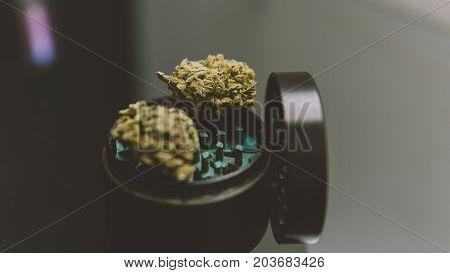 Buds Of Marijuana In The Grinder Close-up.  .varietal Marijuana And Smoking Culture 420