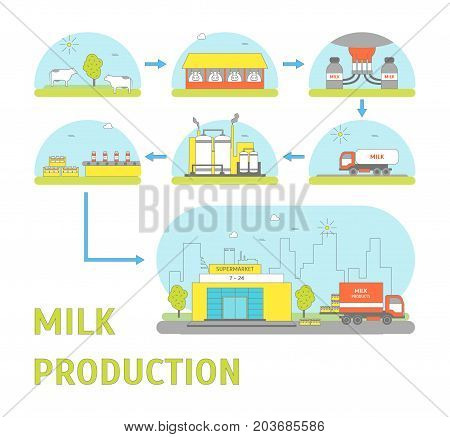 Milk Production Process Stages from Cow to Supermarket Delivery Business Concept Flat Design Style. Vector illustration of Milky Production Cycle