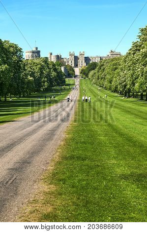 Windsor, UK, May 22, 2010 : The landscaped Long Walk of Windsor Castle park in Berkshire which is a popular visitor leisure attraction
