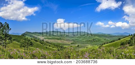 Picturesque mountain panoramic sunny landscape of green mountain hills ridge flowering meadow with lilac wildflowers and beautiful clouds on blue sky at bright summer day - admirable sunshine landscape of Altai mountains Russia