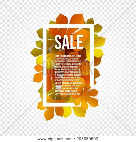 Sunny poster, colorful leaves background in rectangular white frame with promo info about autumn season discount or other marketing promotion. Vector illustration
