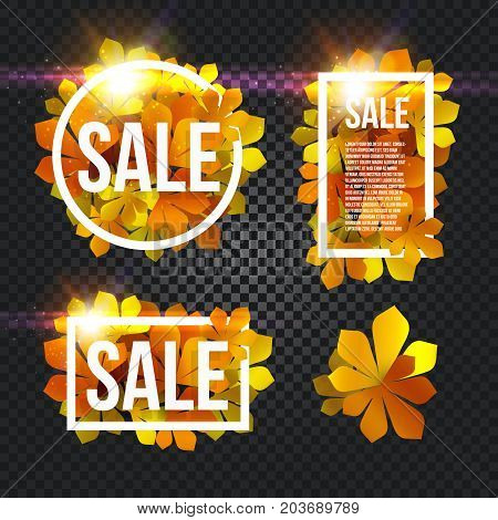 Sunny poster with glowing bright flash, colorful chestnut leaves background in rectangular white frame with promo info about autumn season discount or other marketing promotion. Vector illustration