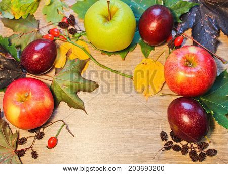 Autumn Still Life Plum, Apple, Catkin, Brier And Stone On Wooden Background