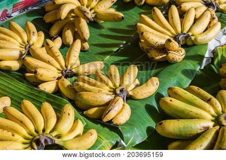 Cluster Banana On Sales In The Market