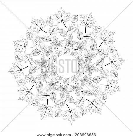 vector black and white round autumn mandala with leaves of maple oak beech horse chestnut and alder - adult coloring book page