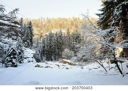 Winter landscape with snow in the Czech Switzerland
