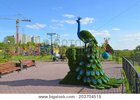 Khimki, Russia - May 30.2017. sculpture of peafowl in the park Eco shore