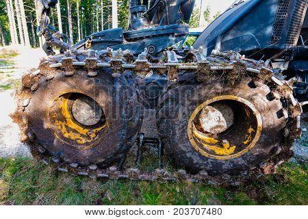 Forest cutting. Timber harvester. Harvester wheels - details