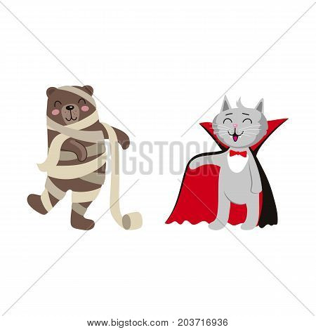 vector flat cartoon funny cat dressed up like vampire count Dracula, mummy wrapped in toilet paper bear set. Isolated illustration on a white background. Fancy Halloween outfit for an animal concept