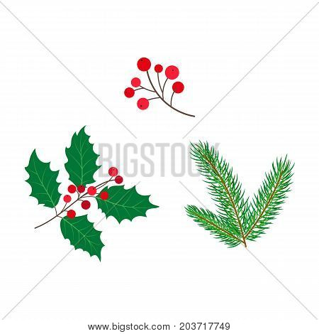 vector flat holly mistletoe ilex cone fir spruce tree branch with leaves berries, set. Isolated illustration on a white background. Christmas cards, banners of presentation decoration design symbol