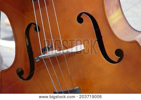 Detail Of An Elegant Line Of A Violin