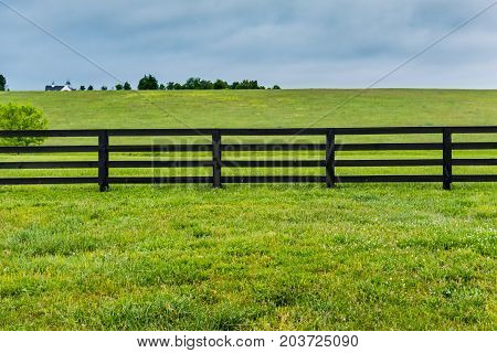 Section of Horse Fence and Pasture in summer