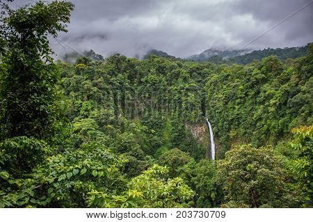 La Fortuna waterfall in the middle of the forest Costa Rica