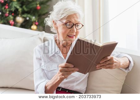 Enjoying novel. Elegant aging lady in glasses is absorbed reading book while sitting on cozy couch with Christmas tree on background