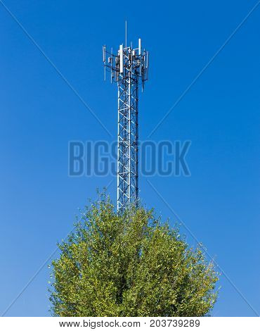 cellular tower and foreground tree against clear blue sky nature and modern technology concept