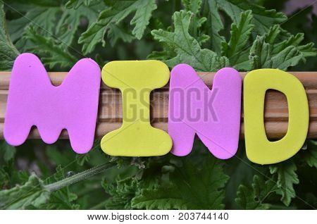 WORD MIND ON A ABSTRACT COLORFUL BACKGROUND