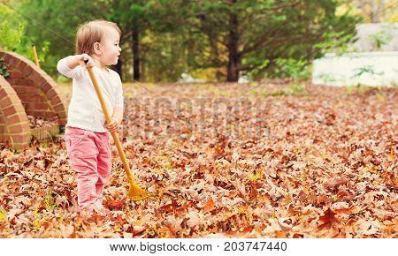 Happy toddler girl raking leaves in autumn