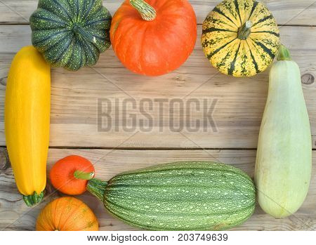 Pumpkin And Squash Vegetable Frame