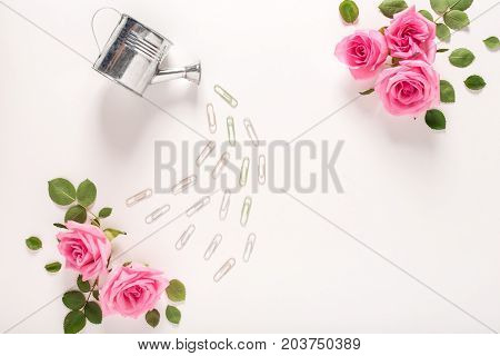 Little watering can and pink rose blossoms