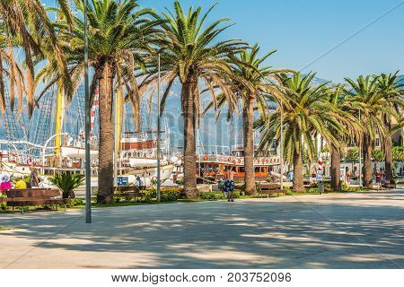 TIVAT, MONTENEGRO - August 24, 2017:  Promenade on the quay of Tivat, Montenegro, with beautiful palm trees, sea vessels against the background of mountain peaks and Kotor Bay.