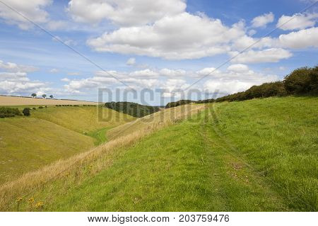 Wolds Wooded Valley
