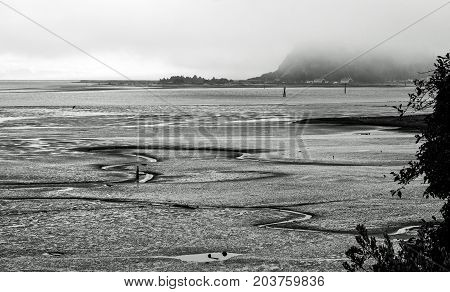 Mudflats at Low Tide on a Foggy Day on the Washington coast in black and white
