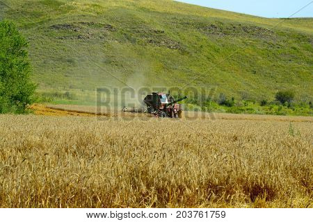 Harvester machine working to harvest wheat field . Combine harvester agriculture machine harvesting golden ripe wheat field. Agriculture