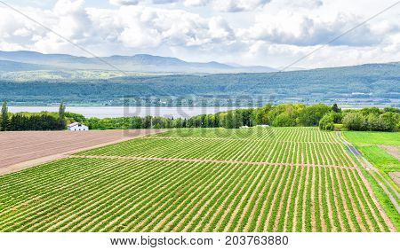 Panorama Or Panoramic Aerial View Of Farmland In Ile D'orleans, Quebec, Canada, Plowed Field, Furrow