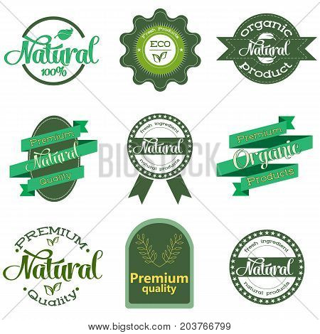 Nature-themed labels and badges with green leaves. Labels and badges with leaves for organic, natural, bio and eco friendly products on white background. Set of vector design elements