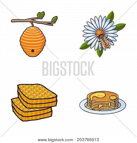 A hive on a branch, a bee on a flower, a honeycomb with honey, a honey cake.Apiary set collection icons in cartoon style vector symbol stock illustration .