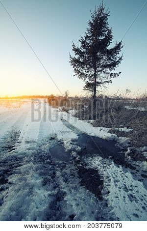 Wheel tracks in mire at winter. Sunset time. Instagram tonning