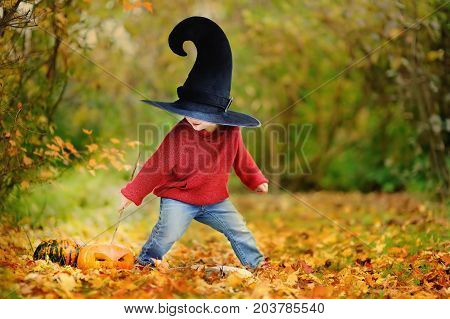 Toddler Boy In Pointed Hat Playing With Magic Wand Outdoors