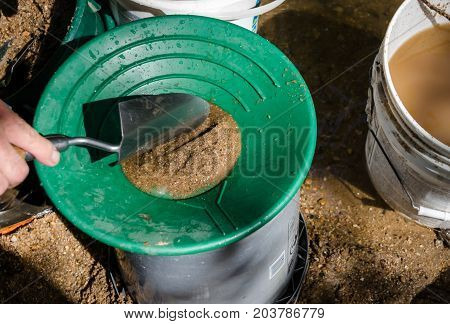 Gold pan being filled with mineral rich material. Fun and adventure of this recreational outdoor activity of panning for gold and prospecting for gemstones.