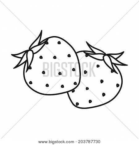 Strawberry, sweet and sour fruit.Fruit single icon in outline style vector symbol stock illustration .