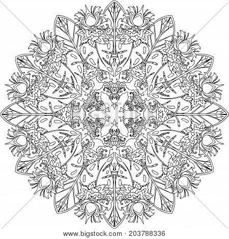 Vector Ethnic Ornamental Art