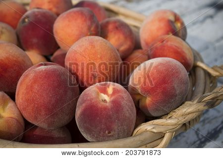 A basket of fresh organic farmed peaches.