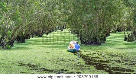 An Giang, Vietnam - August 26th, 2017: The ferryman takes traveler on a boat tour along the canals in the mangrove forest. This is an eco tourism area at Mekong Delta in An Giang, Vietnam