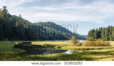 Landscape scene of water with tidal inlets of marsh grasses, and mountains in the background