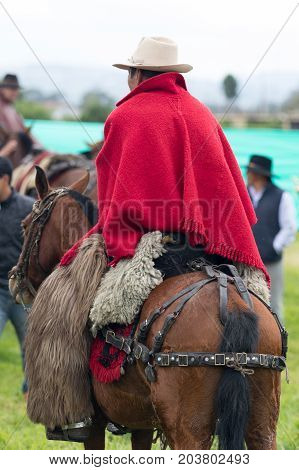 June 3 2017 Machachi Ecuador: cowboy form the Andes on horseback wearing a red traditional poncho and furry chaps