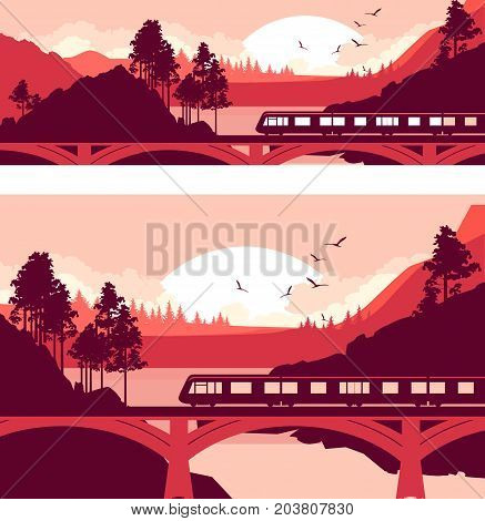 Set Vector illustration of a locomotive a train at high speed on a railway bridge in a mountain landscape