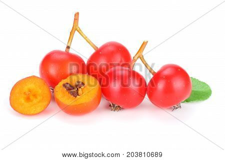 Red Rowan With Slice And Green Leaf Isolated On White Background. Macro