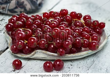 freshly picked organic redcurrant laid in a ceramic dish on an old authentic wooden painted table room for copy space