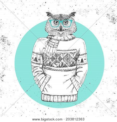 Retro Hipster fashion animal owl dressed up in pullover. Hipster animals