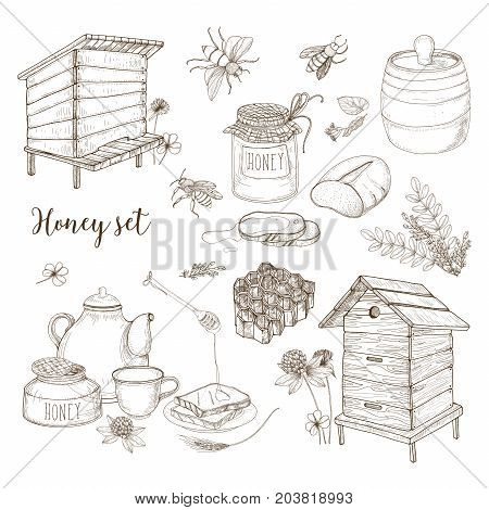 Honey production, beekeeping or apiculture set - honeycomb, man-made beehives, wooden dipper, bees, teapot hand drawn in retro style on white background. Monochrome vector illustration