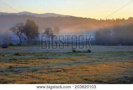 Mystic foggy landscape at sunrise, close up